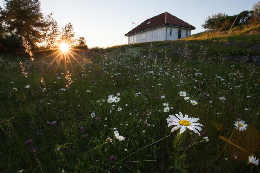 ÅPNES FOR PUBLIKUM: Hytta På Gammeløya Er Nå åpen For Publikum. Foto: Frank Otto Pedersen