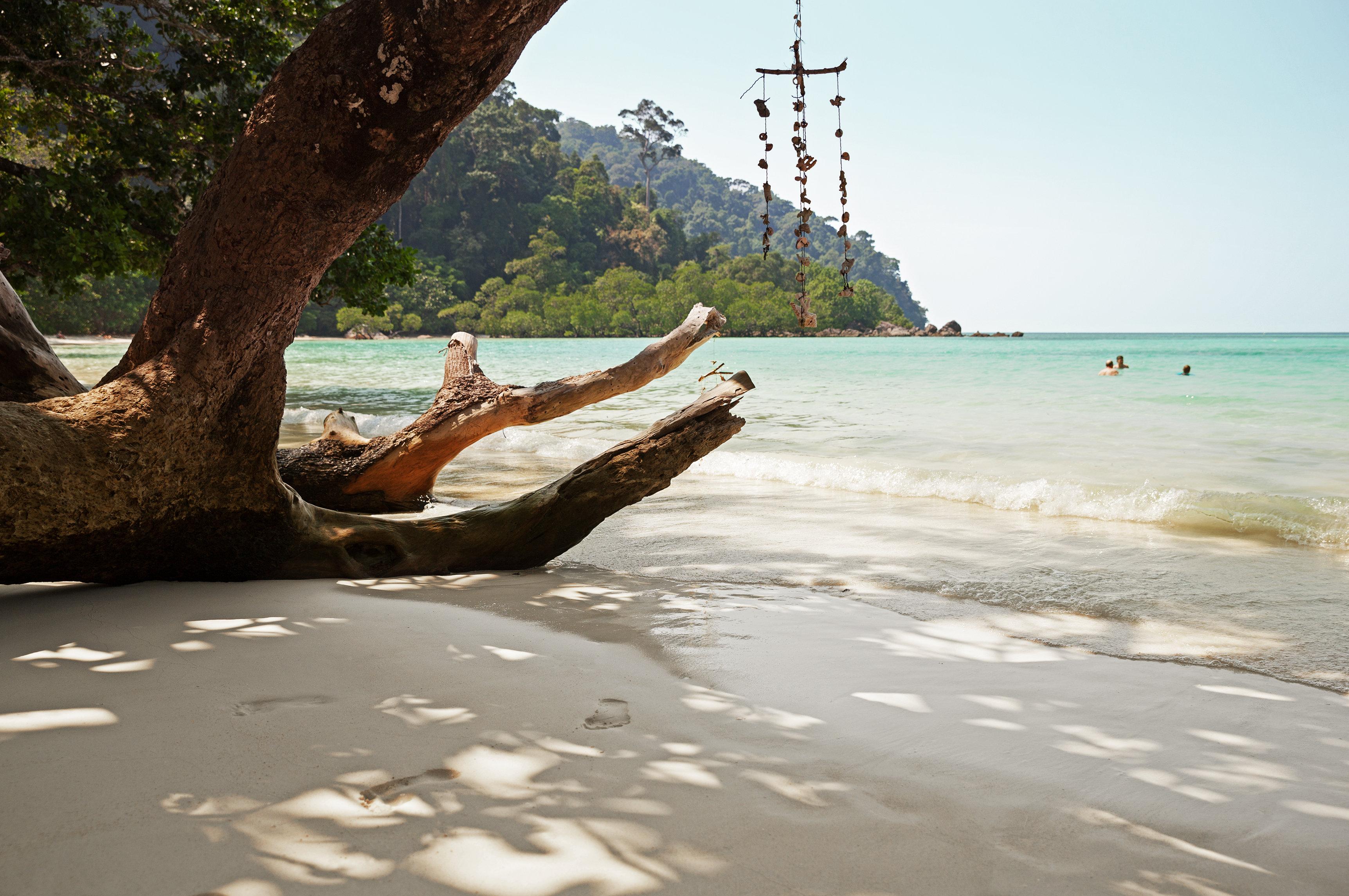 Thailand Frister I Vinter
