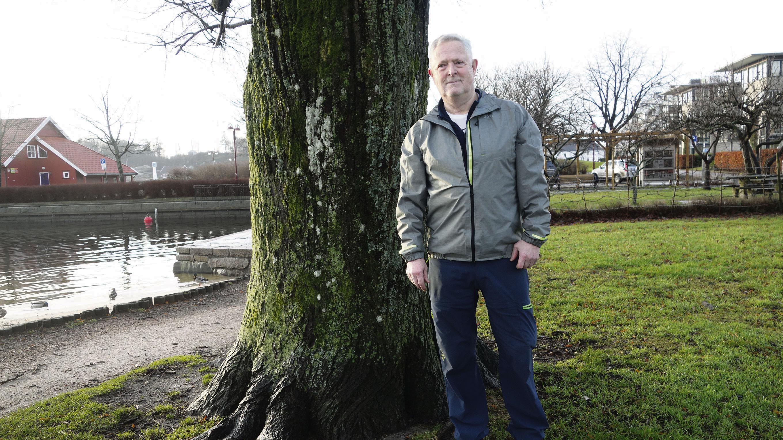 TREET: Kunstneren Ove Tønnessen Står Ved Treet Som Fuglekassen, Håp, Henger I.